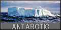 antarctic-photo
